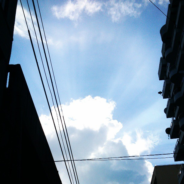 Bright Day...